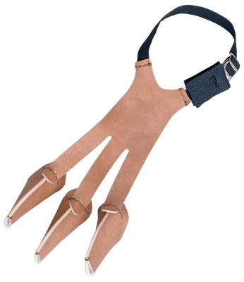 Bear® Archery Medium Single-Seam Glove