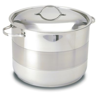 Gourmet 11 Quart Covered Stock Pot