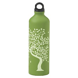 Aluminum, BPA-free Water Bottle
