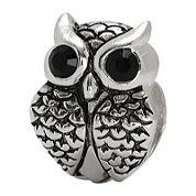 Forever Moments™ Crystal Owl Charm Bracelet Bead