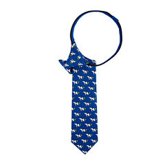 Peanuts Snoopy Woodstock Run Zipper Tie - Boys