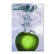 Apple Splash Canvas Wall Art