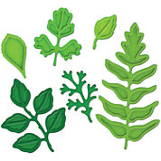 Spellbinders™ Shapeabilties® Foliage 6-pc. Die Set