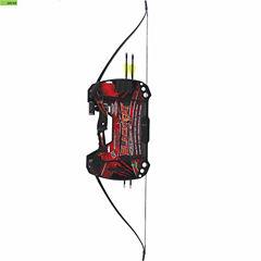 Barnett Black Cat Recurve Archery Set