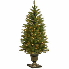 National Tree Co. 4 Foot Dunhill Fir Entrance Pre-Lit Christmas Tree
