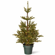 National Tree Co. 4 Feet Imperial Spruce Potted Pre-Lit Christmas Tree