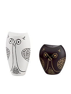 woodland park owl salt & pepper set
