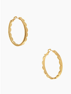scallop hoops