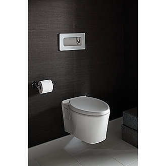 Kallista: Dual-Flush Wall-Mount Toilet Actuator: P70364-00