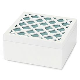 White & Blue Storage Box
