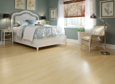 Dream home nirvana plus 10mm lakeside village maple for Nirvana plus laminate flooring