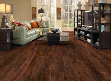 Dream Home - 12mm+pad Buffalo Springs Chestnut:Lumber Liquidators ...