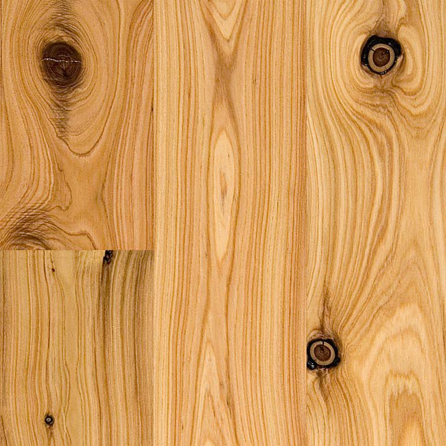 Australian Cypress Hardwood Flooring click to see detailed product specifications 34 X 5 14 Australian Cypress Flooring Image