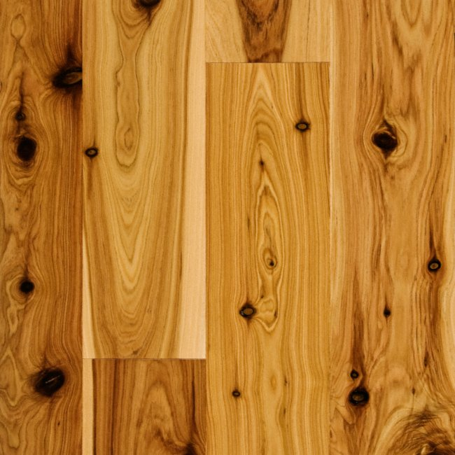 Sch n engineered product reviews and ratings australian cypress 3 8 x 3 1 4 australian - Australian cypress hardwood ...
