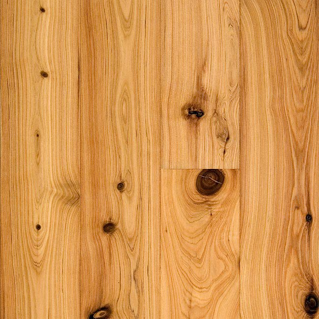 Bellawood product reviews and ratings prefinished 3 4 x 3 1 4 australian cypress flooring - Australian cypress hardwood ...