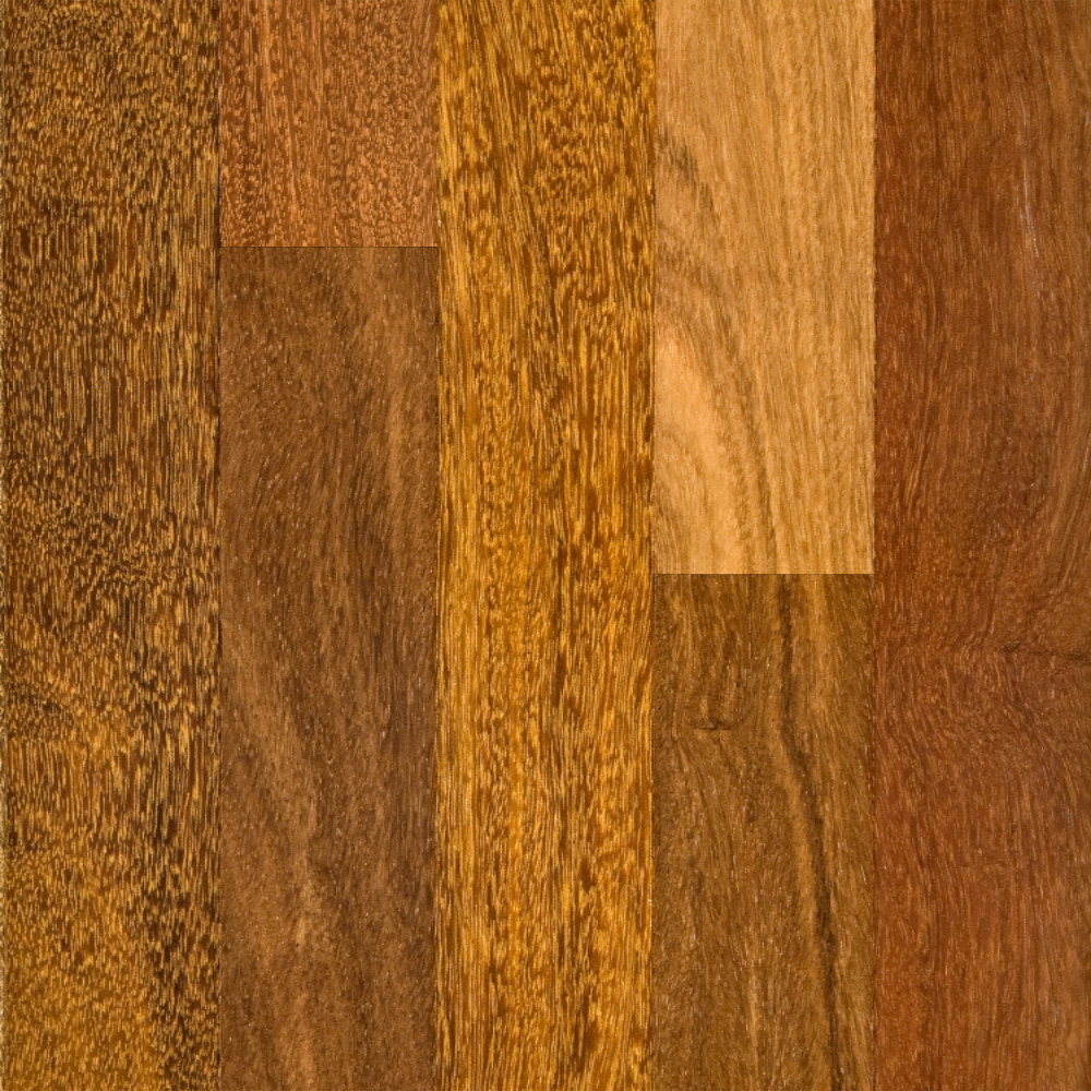 3 4 x 5 select brazilian chestnut bellawood lumber for Lumber liquidator