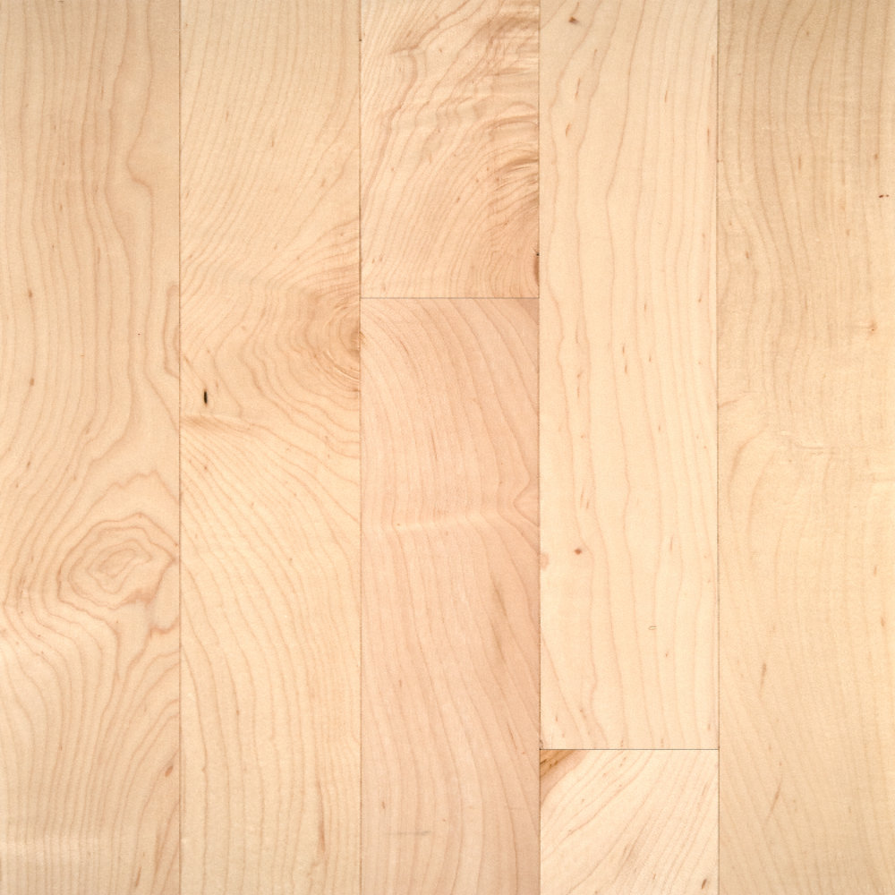 3 4 x 2 1 4 select maple bellawood lumber liquidators for Bellawood hardwood floors