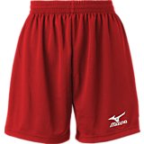 Mizuno Women's Mesh Shorts