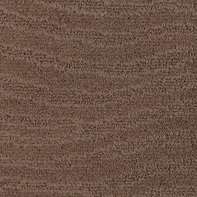 Sandscapes Scrub Brown