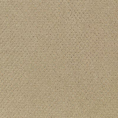 Regal Design Beige Nouveau