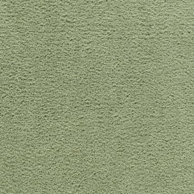 Savory Cilantro Leaf