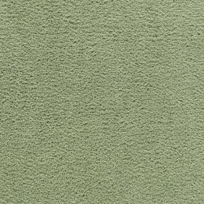 Instant Classic Cilantro Leaf