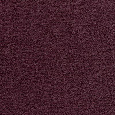 Classic Cadence Plum Purple
