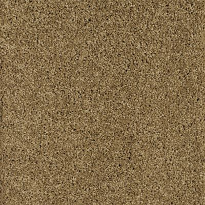Sea Star Antique Brown