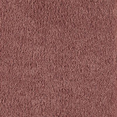 American Tradition Royal Blush