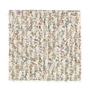 Carpet Flooring Berber Ease 17131 America S Finest
