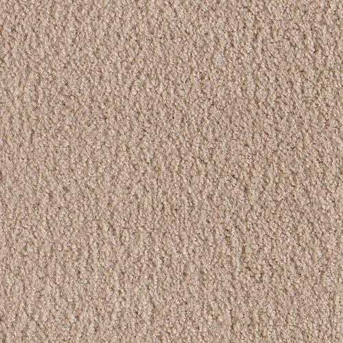 Mohawk Industries Salsa Bandit Carpet Dalton Ga Floormax