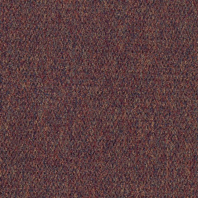 Carpet AlmaMater 1E61-335 Wine