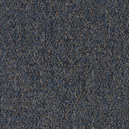 Carpet Alma Mater Navy 559 main image