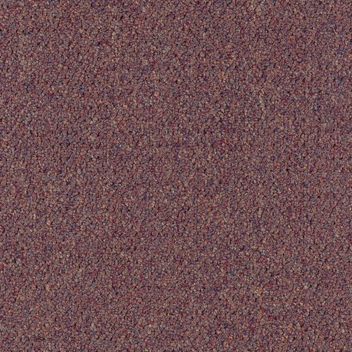 Carpet CollegeTown26 6612-385 Potpourri