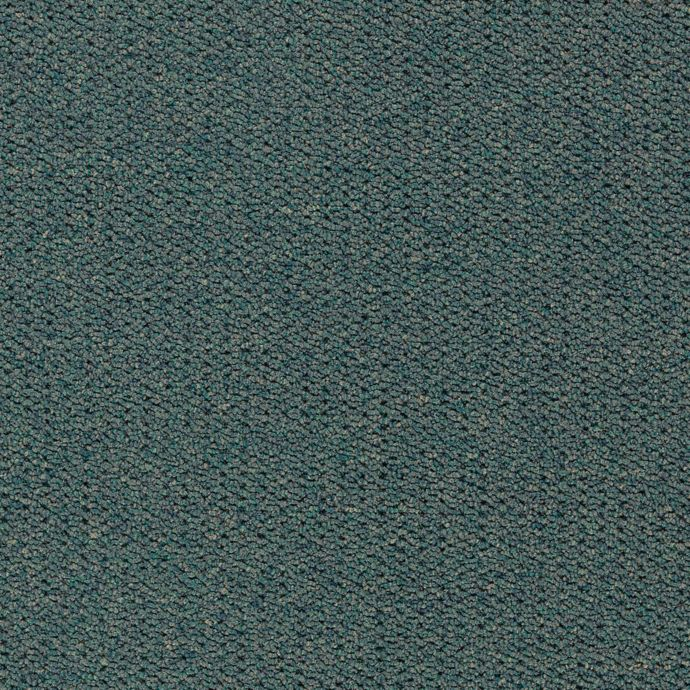 Carpet CollegeTown26 6612-685 Evergreen