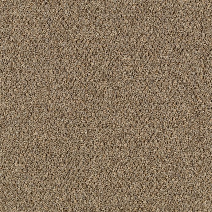 Carpet CollegeTown26 6612-837 Sienna