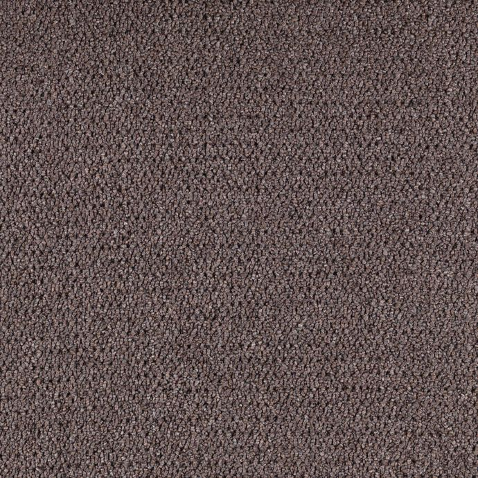 Carpet CollegeTown26 6612-879 SlateBrown