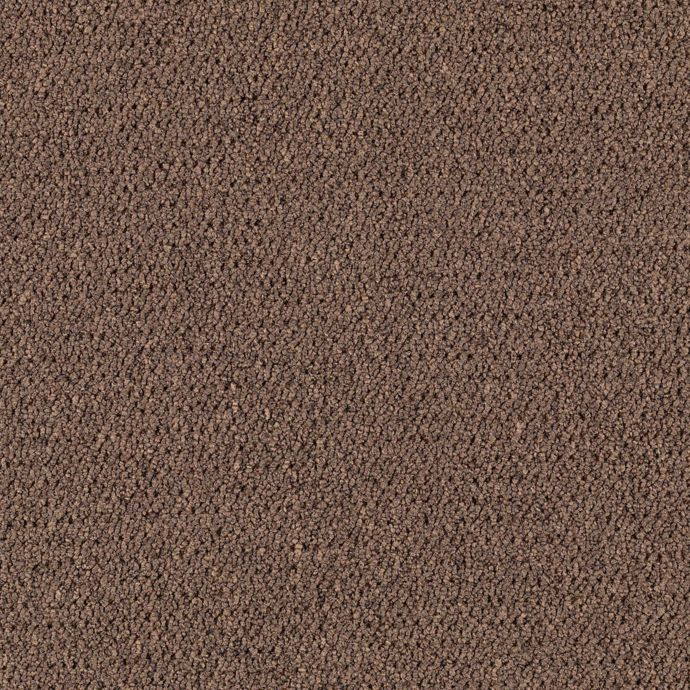 Carpet CollegeTown26 6612-881 Tobacco