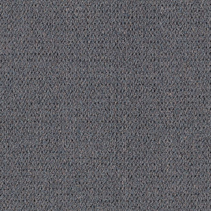 Carpet CollegeTown26 6612-955 Pewter