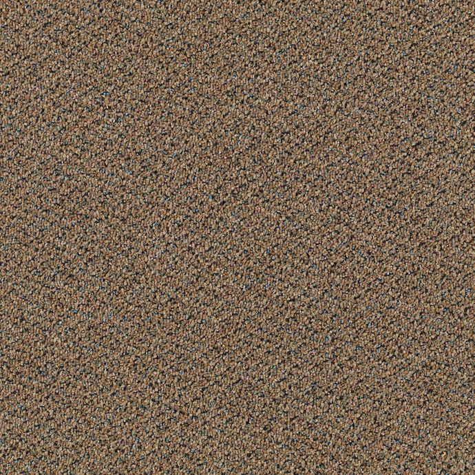 Carpet AXIOM Caramel  main image