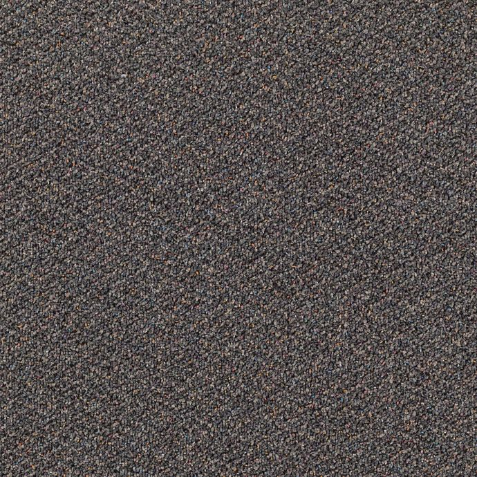 Carpet DotCom 1687-979 Charcoal