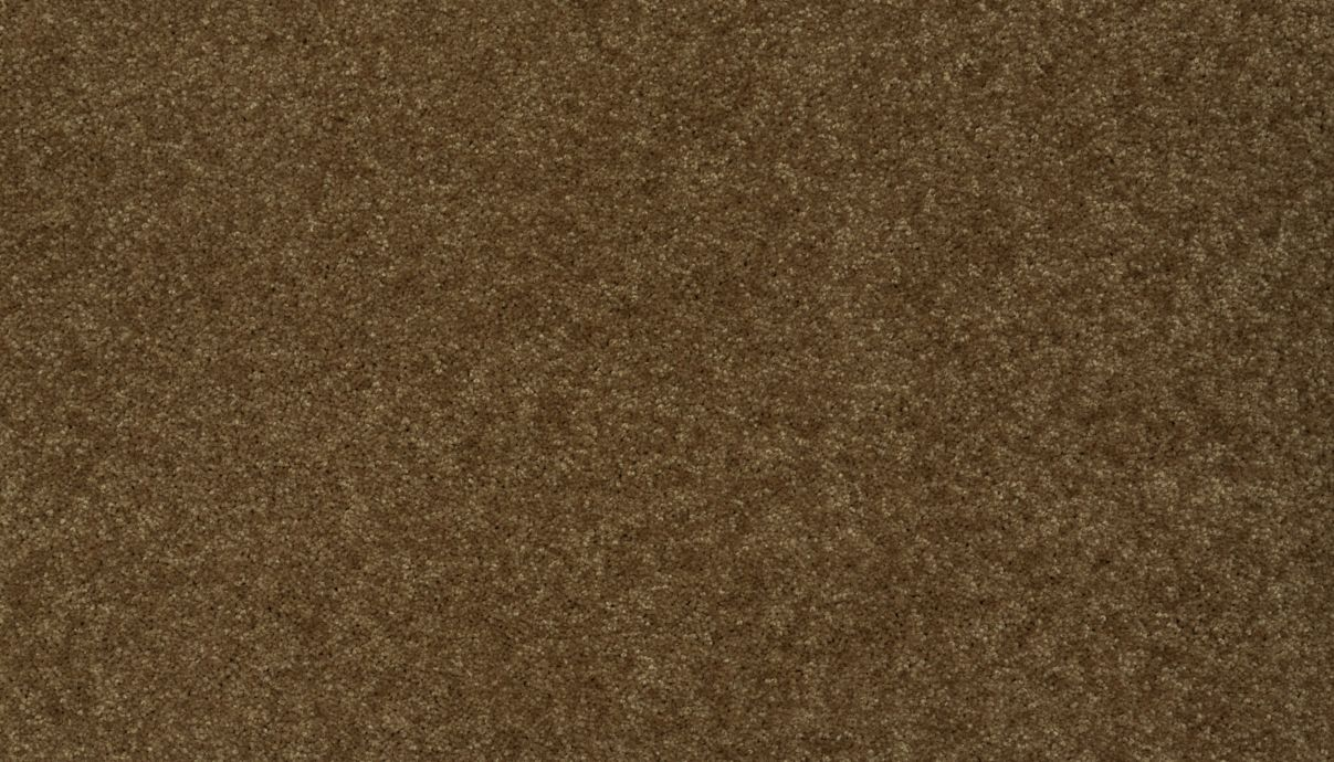 Carpet ActiveSpirit 7922-878 LeatherBound