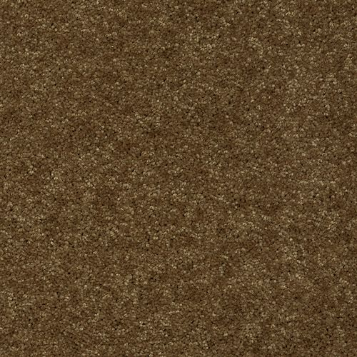 Carpet Active Spirit Leather Bound 878 main image