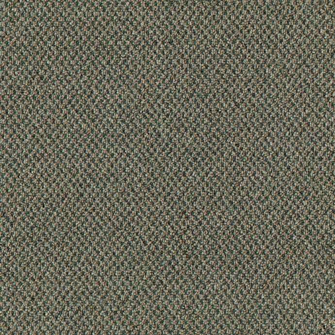 Carpet Chex 6343-658 EarthyGreen