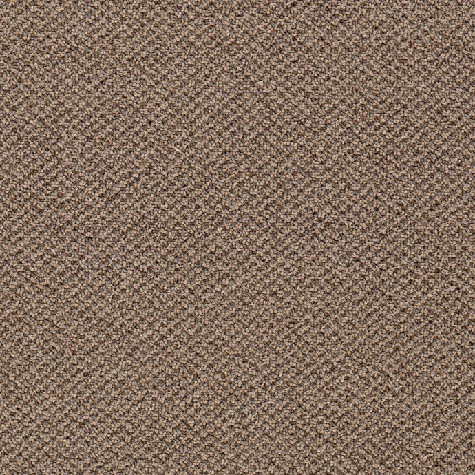 Carpet Chex 6343-831 TraditionalTan