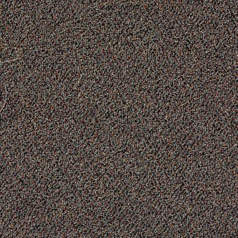 Carpet Aesthetics 6627-111 Platinum