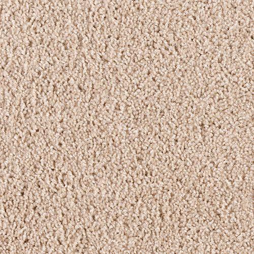 Carpet Bombardier 1D97-713 Sandstorm