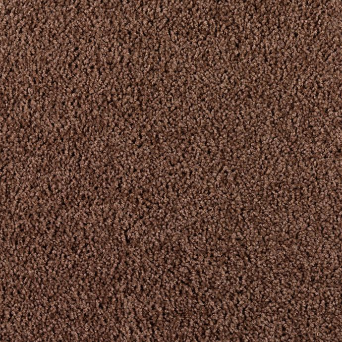 Carpet Bombardier 1D97-878 EarthenPottery