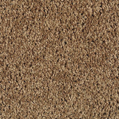 Sea Star Antique Brown 521 | Creative Carpet & Tile