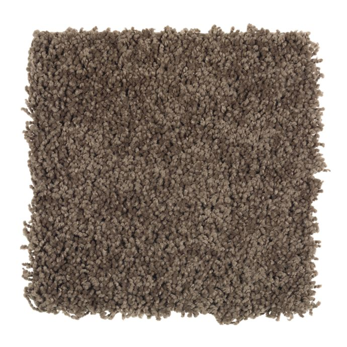 Carpet Sea Star Coconut Hull 505        main image